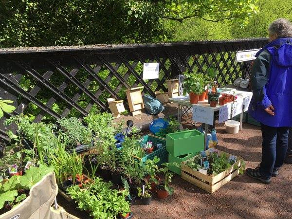 Plant Stall at the food market on Armstrong Bridge